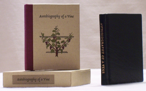 Autobiography of a Vine